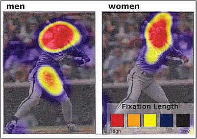 men fixate on baseball player George Brett's head and groin, while women mainly fixate on his head
